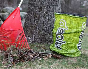 Buy dsolv biodegradable, compostable lawn and leaf bags here. width=